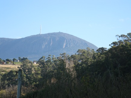 Mt Wellington from the rivulet