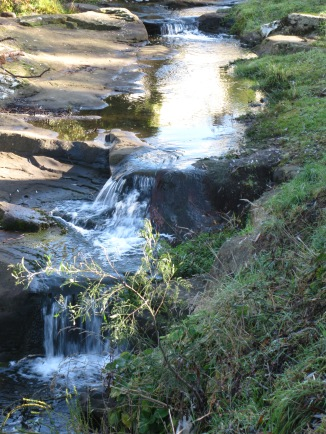 The Cascade Rivulet mini falls