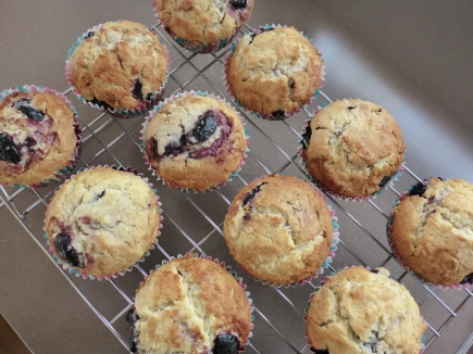 Blueberry Muffins are a great snack.