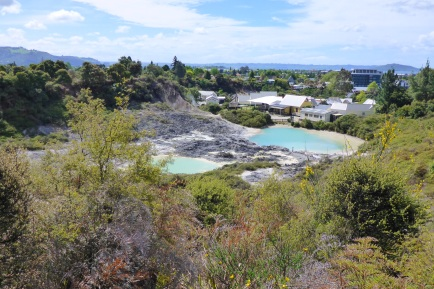 Rotorua and the thermal pools