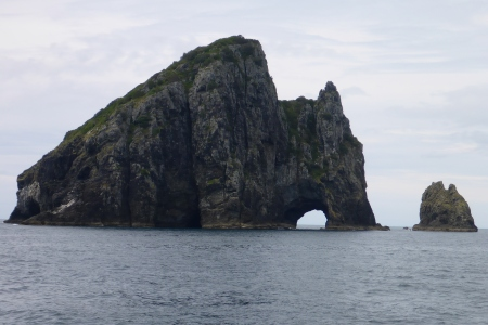 Motukokako - Better known as Hole in the Rock